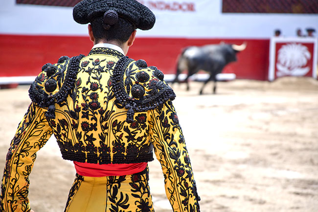 Matador with Bull in Ring